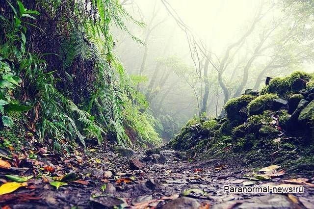 НЛО, порталы и фантомы: Загадки острова Тенерифе
