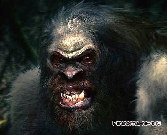 Зубастый монстр больше двух лет пугал семью с Лабрадора