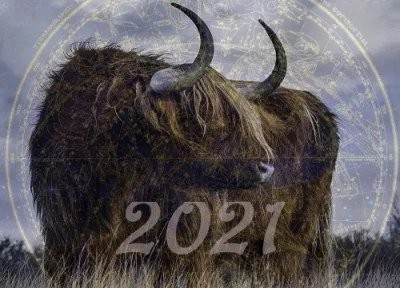 Астролог Глоба рассказала, для каких знаков Зодиака весь 2021 год пройдет белой полосой