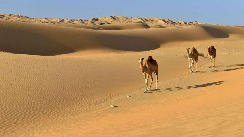 Центральная Азия в ближайшем будущем рискует превратиться в гипераридную пустыню