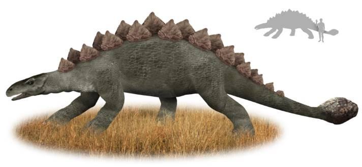 Загадочный зверь Мухуру из Кении очень похож на динозавра - Паранормальные новости