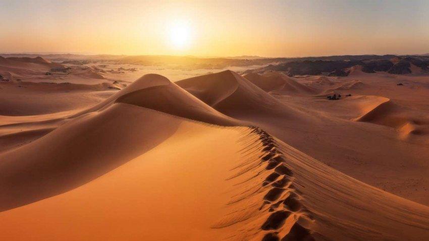 Африканская борьба с жарой и засухой: Великая зеленая стена вырастет через Сахару