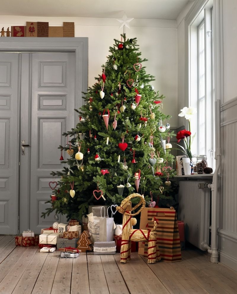ТОП 10 лучших новогодних елей