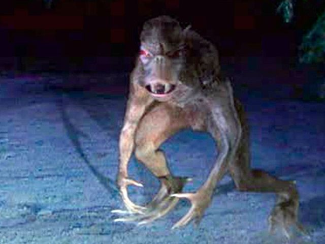 В Марий Эл чупакабра уничтожила кур и кроликов, оставив крошечные дырочки на шее - Паранормальные новости