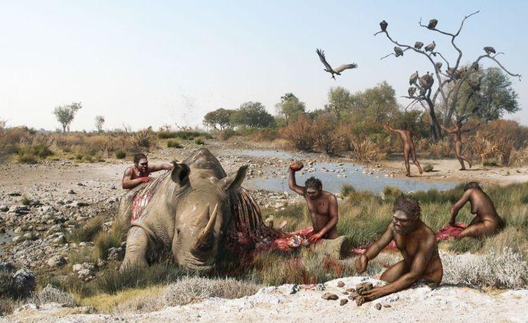 Загадка костей из Сент-Преста: 2 миллиона лет назад в Европе уже жили люди? - Паранормальные новости