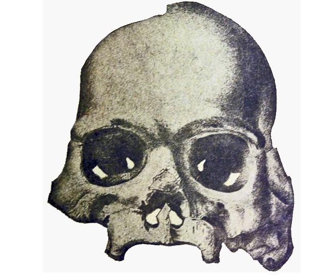 Артефакты, возрастом в десятки миллионов лет, из калифорнийской шахты - Паранормальные новости