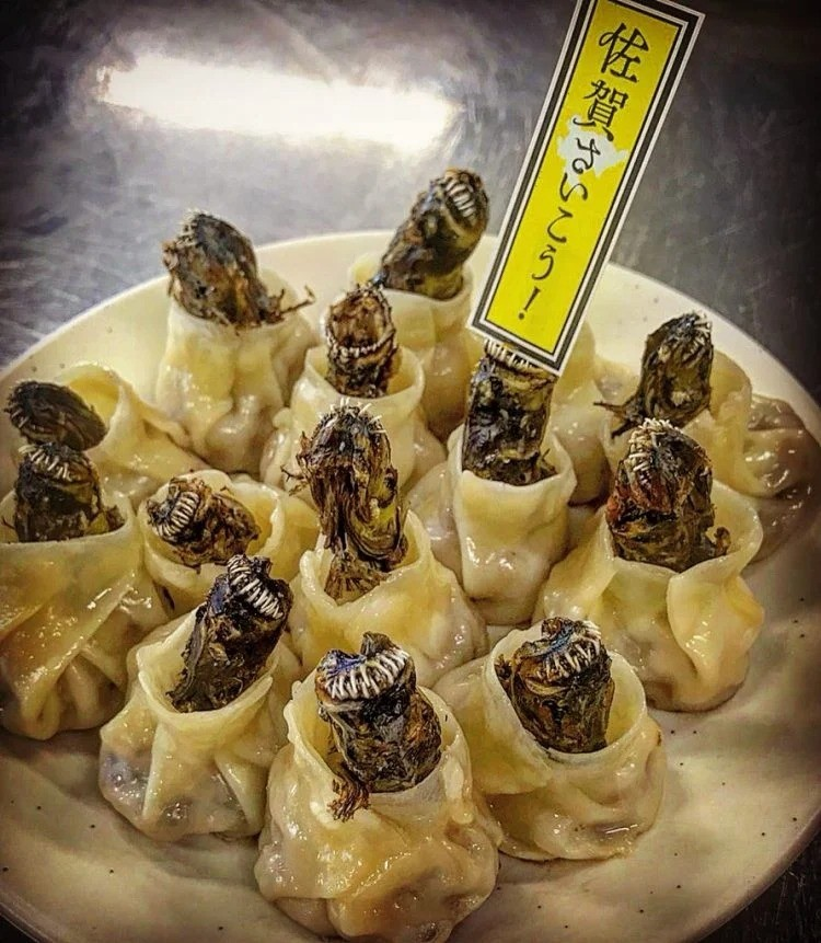 Пельмени с Чужими: В Японии придумали новое блюдо, пугающее своим внешним видом - Паранормальные новости