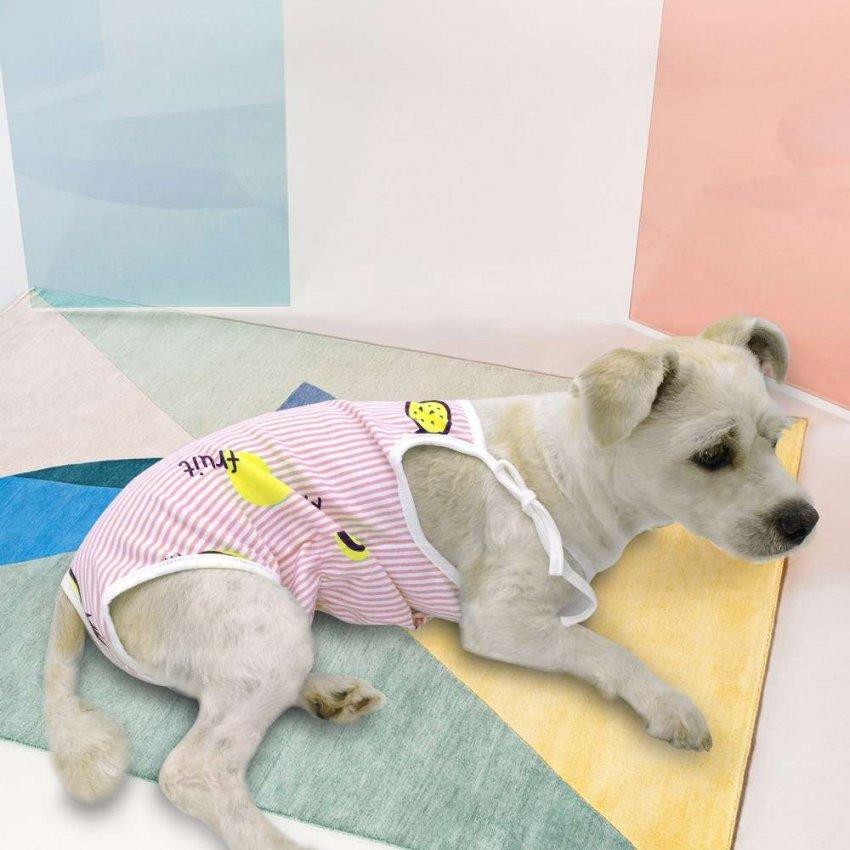 Обзор популярных марок производителя пеленок для собак: ТОП-5