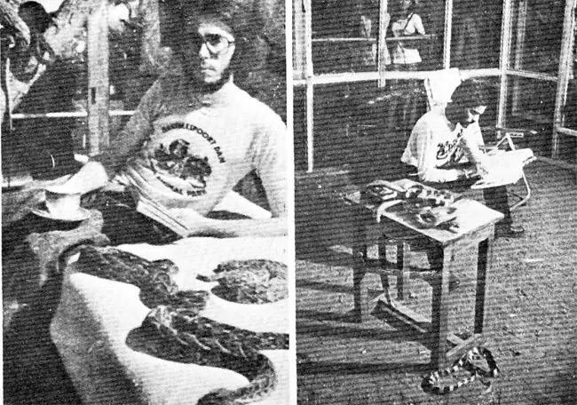 История об индийце, который провел 72 часа в клетке с 72 ядовитыми змеями и его ни разу не укусили - Паранормальные новости