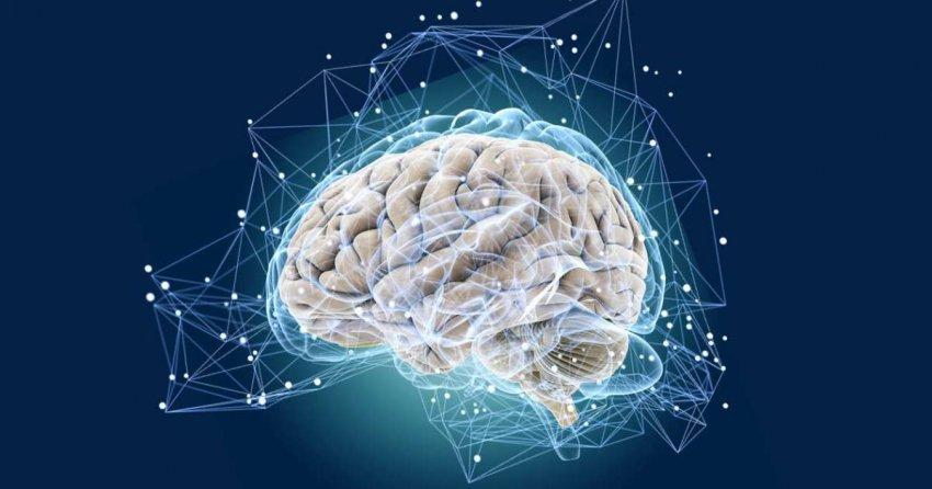 Ученые Кембриджского университета назвали шесть способов, которые помогут «перезагрузить мозг» после тяжелого года COVID-19