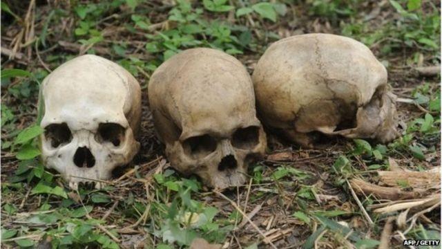 Зловещий Ибаданский лес, в котором колдуны замучили и зверски убили сотни людей (+18) - Паранормальные новости