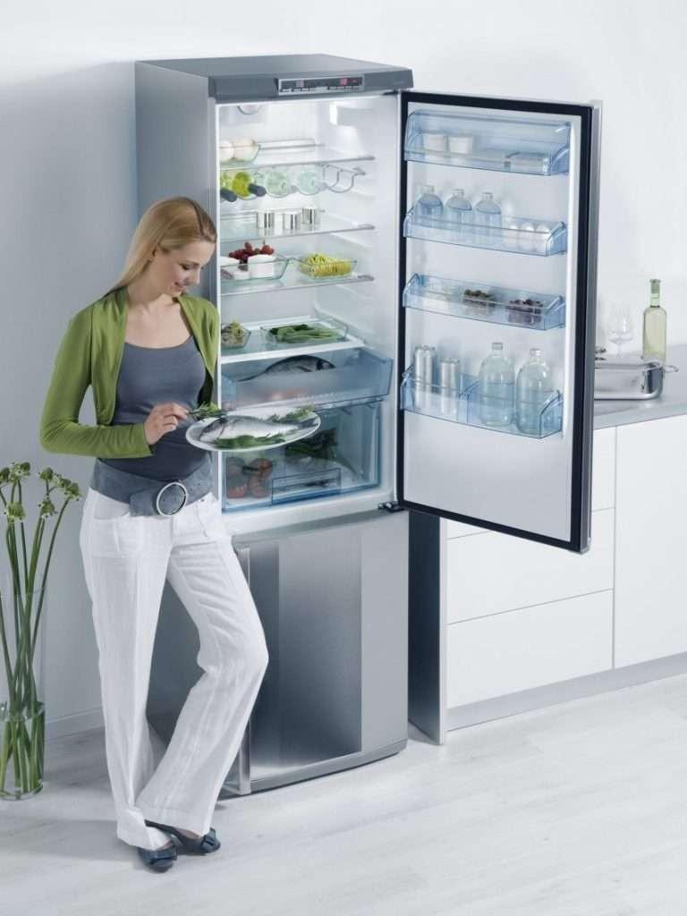 Холодильники с ноу фрост. Топ лучших предложений