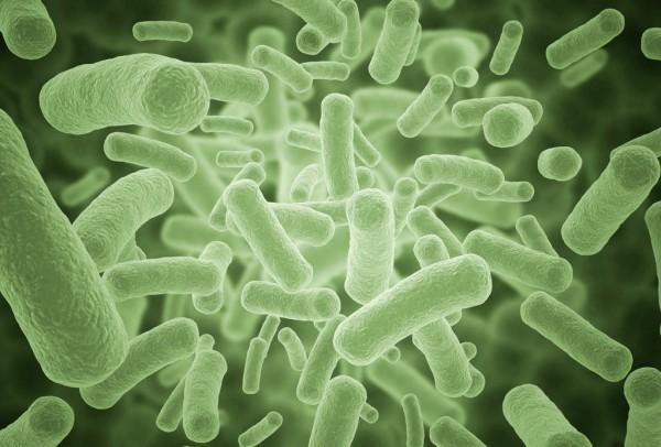 Ученые предупредили о риске новой пандемии со смертностью 75%