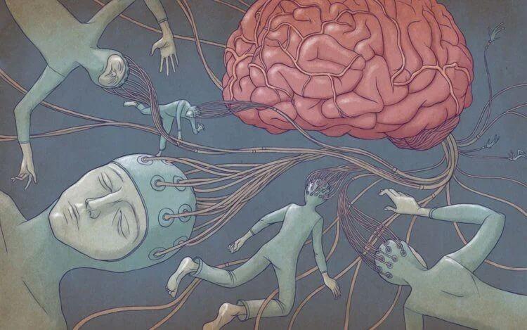 Как мозг человека связан с квантовой физикой?