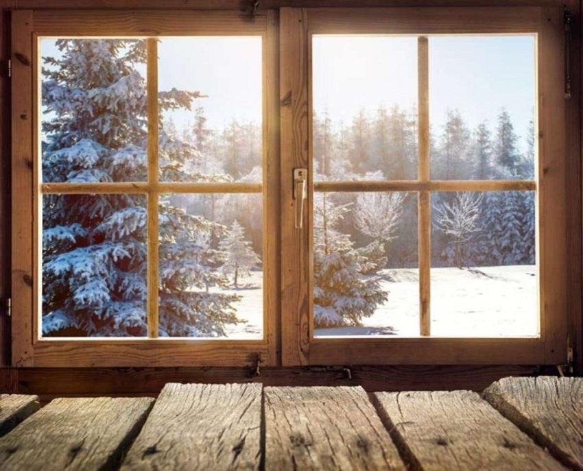 Появляется прозрачная древесина, которая может стать энергоэффективной альтернативой стеклу