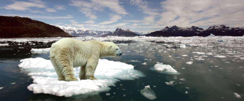 Изменение климата снижает вероятность экстремальных холодов