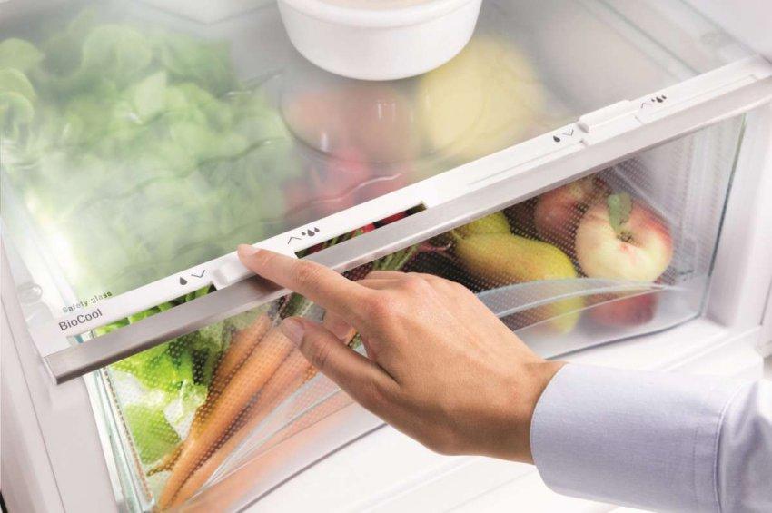 Холодильники с зоной свежести. Топ лучших предложений
