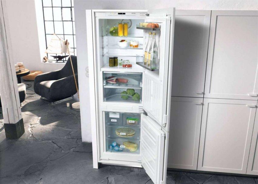 Холодильники с большой морозильной камерой для дома. Топ лучших предложений