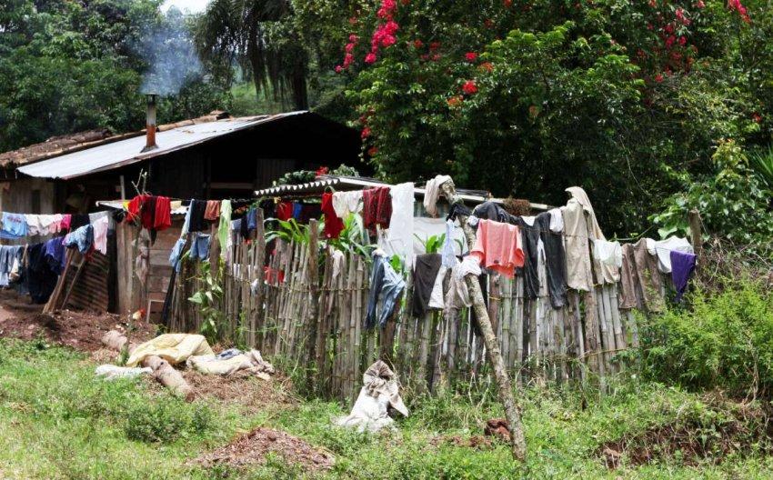 Латинская Америка: неравенство и политическая нестабильность преподают уроки для остального мира