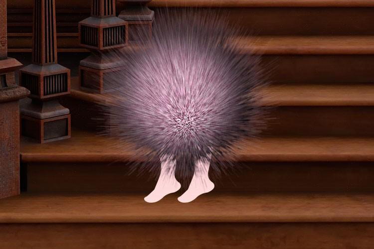 Странные живые меховые шарики на двух ножках в доме - Паранормальные новости