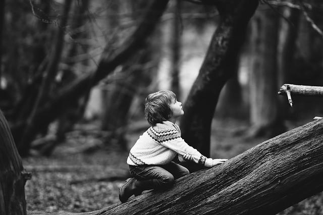 8-летний шведский мальчик гулял у леса и его похитили пришельцы - Паранормальные новости