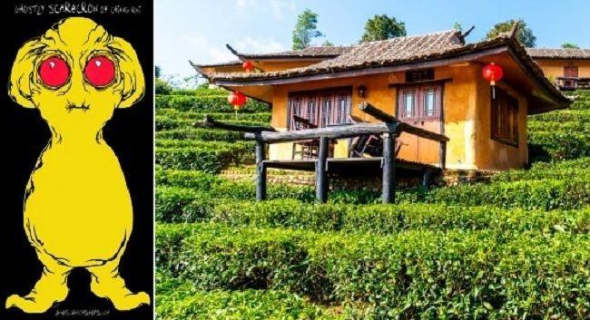 Случай 2005 года с желтым летающим гуманоидом из Таиланда - Паранормальные новости