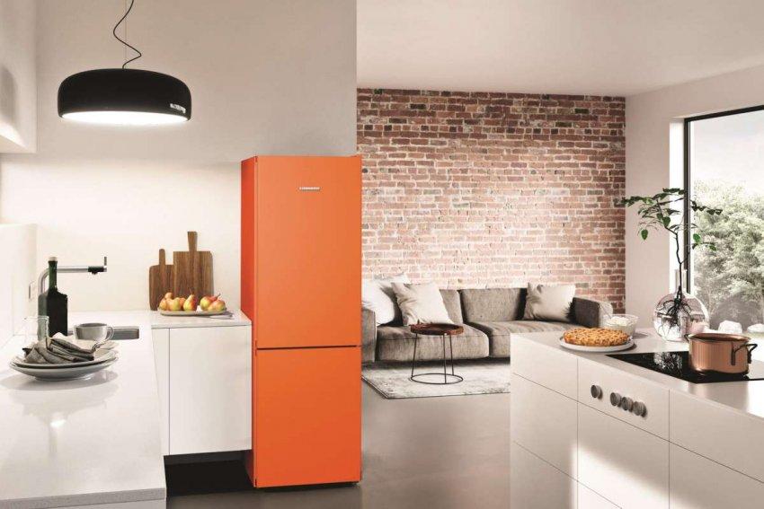 Холодильники Liebherr No Frost. Топ лучших предложений