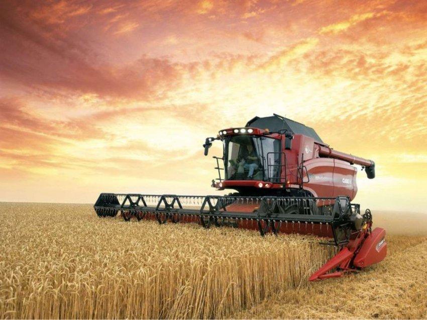Глобальное недоедание: зерновые культуры могут спасти положение
