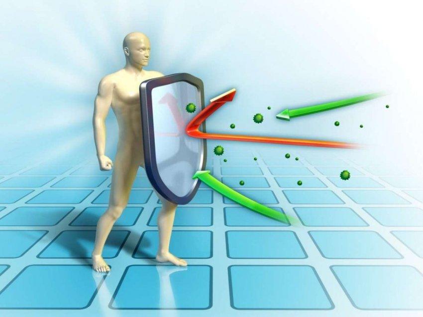 Коронавирус развивается, но наши антитела тоже