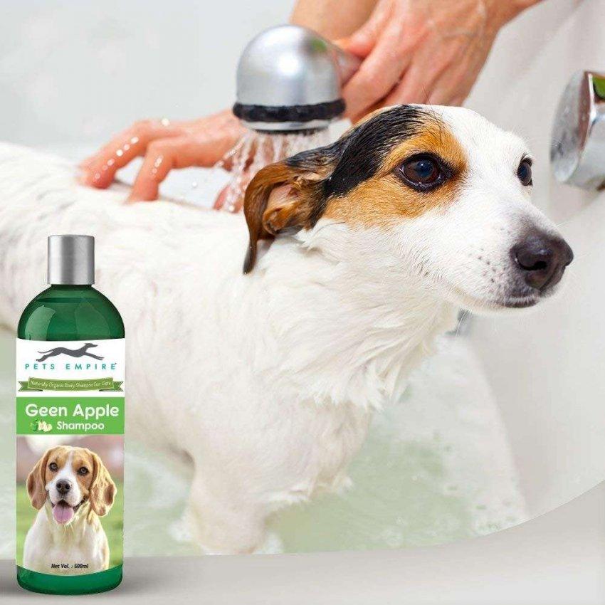 ТОП-10 лучших шампуней для собак на 2021 год