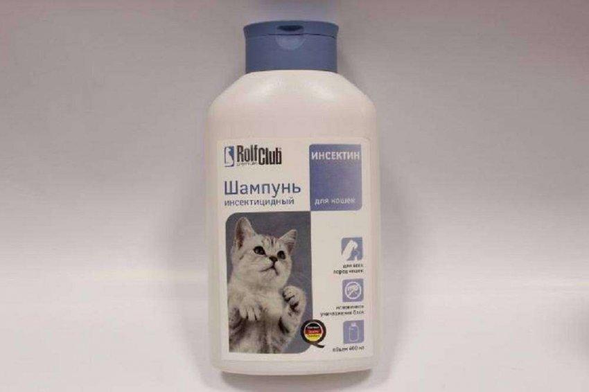 ТОП-10 популярных шампуней для котов и кошек на 2021 год