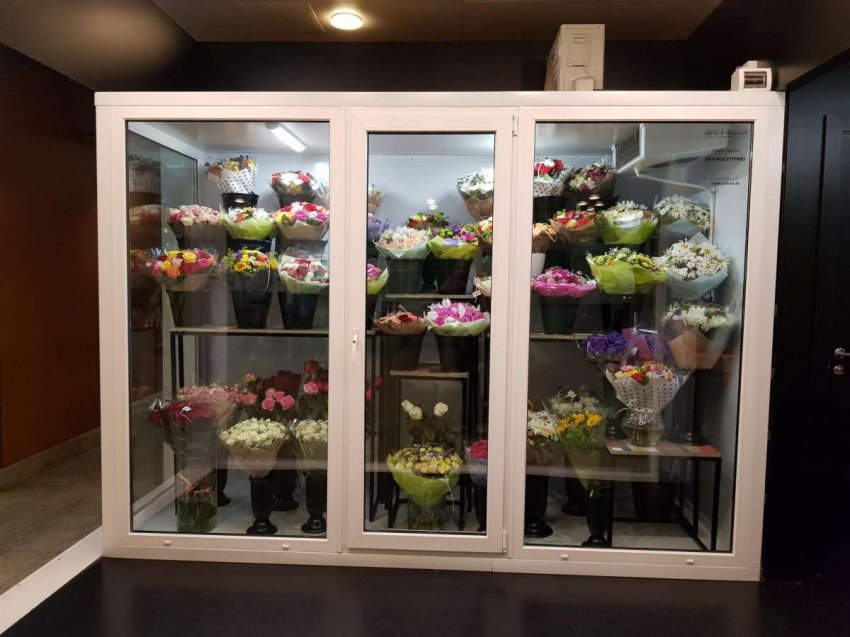 Холодильные шкафы для цветов. Топ лучших предложений