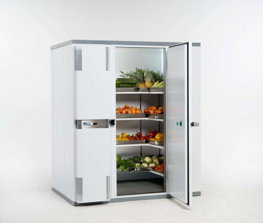 Холодильные шкафы для фруктов. Топ лучших предложений