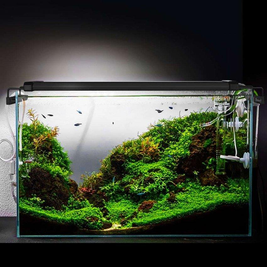 ТОП-10 лучших ламп для аквариумов