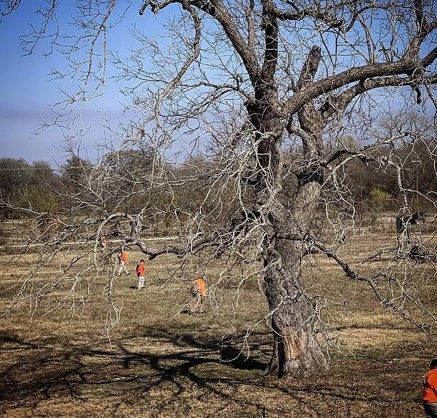 Бесследное исчезновение Джейсона Лэндри, пропавшего после того, как его машина врезалась в дерево - Паранормальные новости