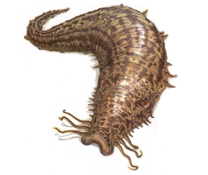 Загадочные криптиды в виде огромных слизней - неизвестные науке животные? - Паранормальные новости