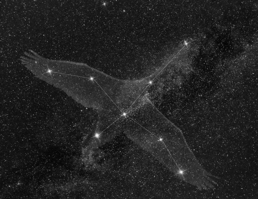 Хаббл сделал захватывающий снимок эмиссионной туманности Водоросли в созвездии Лебедя