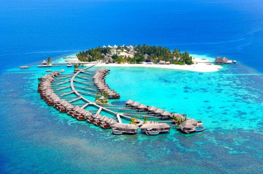 Дайвинг на Мальдивах: коралловый рай исчезает под поверхностью океана