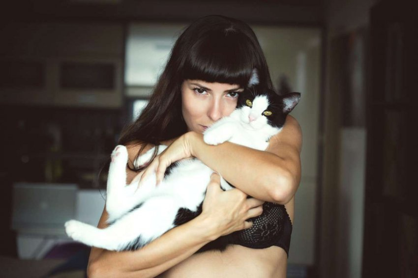 Сервис «Мамба» развеял мифы о котах и женском одиночестве