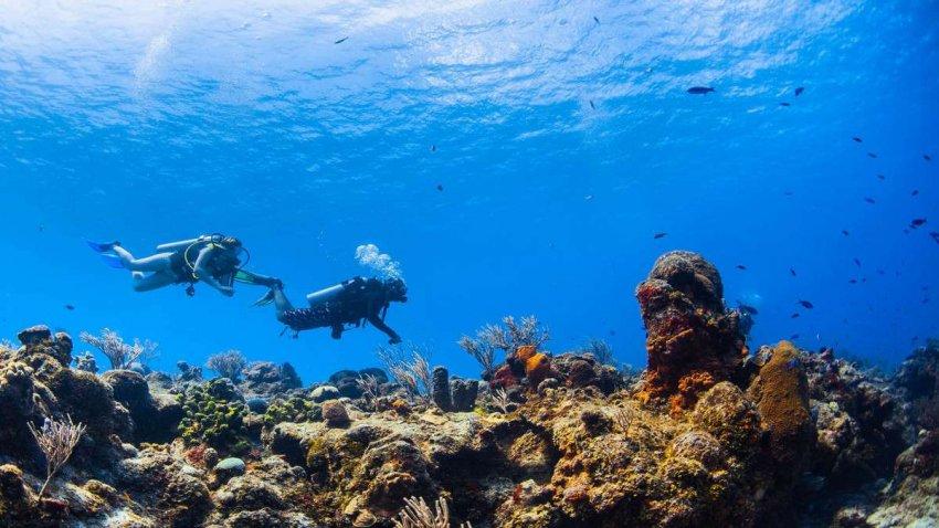 Архипелаг Чагос: изменение климата разрушает один из самых нетронутых тропических островов на Земле