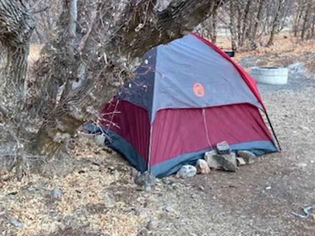 В каньоне штата Юта нашли женщину, которая прожила тут полгода, питаясь травой и мхом - Паранормальные новости