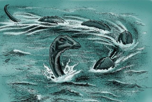 В Канаде увидели и сфотографировали нечто черное и огромное в озере Оканаган, где по легендам живет монстр - Паранормальные новости