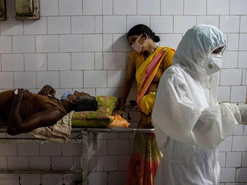 Q + A: индийский вариант коронавируса – что это и какой его эффект?