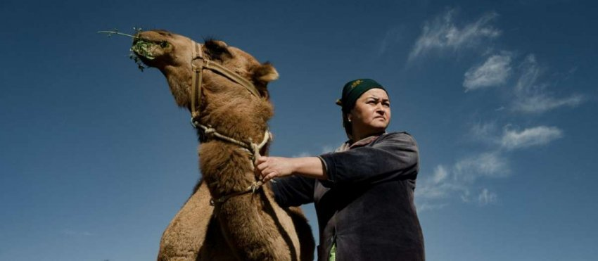 «Двери в Узбекистан»: писатель Олег Рой расширяет свое международное сотрудничество