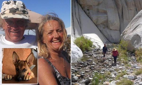 В 2019 году туристка подвернула лодыжку, присела на камень вместе со своей собакой, и вскоре оба бесследно пропали