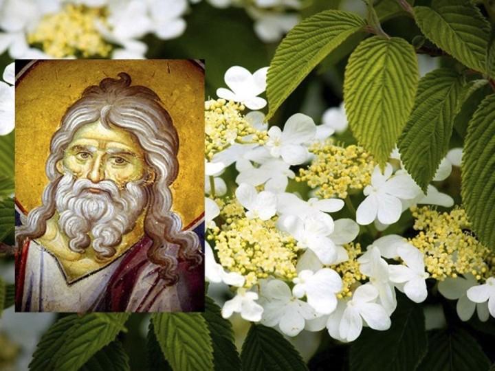 Какой церковный праздник, сегодня, 13 июня чтят православные христиане