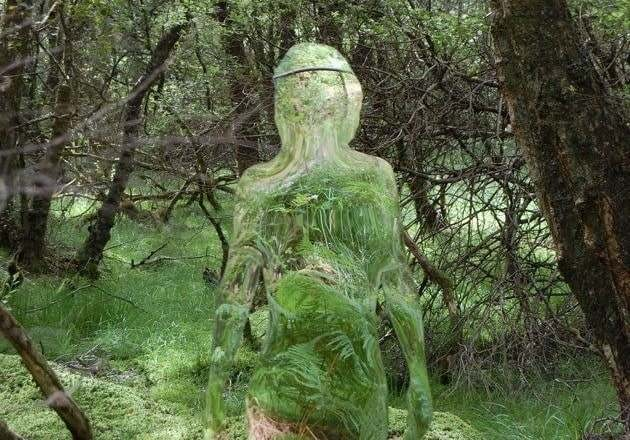 Гуманоид в маскировке в лесу Айдахо перепугал двух охотников