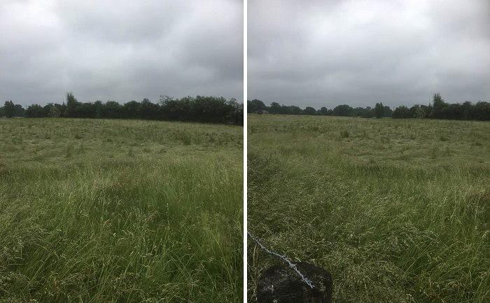 Ночью британского фермера разбудил странный купол света над полем, а потом он увидел в этом месте большой круг