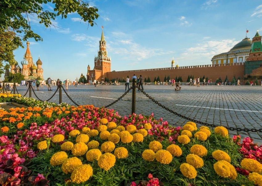 Отдыхаем с детьми: что интересного посмотреть в Москве летом 2021 года
