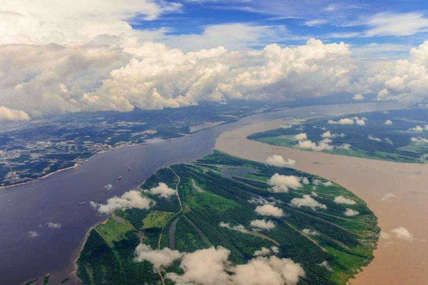 Амазонка: в храме бразильских тропических лесов